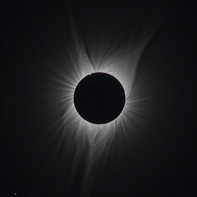 corona2017_RUSM_10_90bl.jpg