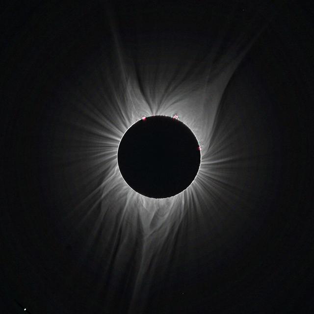 corona18-22_4812_95bl.jpg
